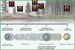 Explore Evolution, diatoms