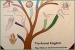 North Carolina Museum of Natural Sciences, arthropods2